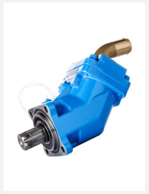 Fixed displacement piston pump